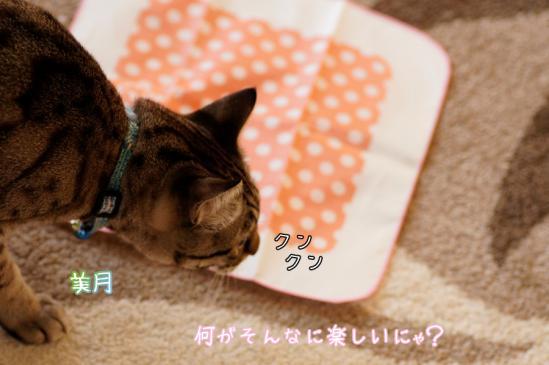 11_20120328071140.jpg