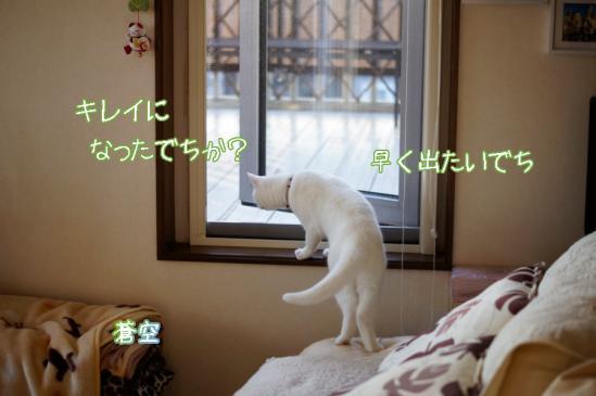 1_20120413084002.jpg