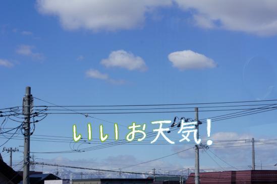1_20120427093603.jpg