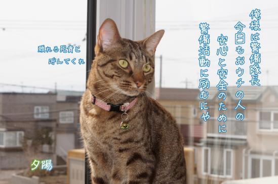 1_20120504072244.jpg