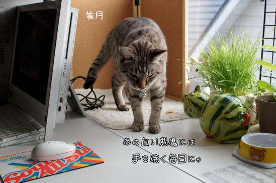 1_20120710080029.jpg