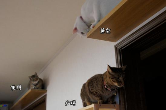 1_20120807083012.jpg