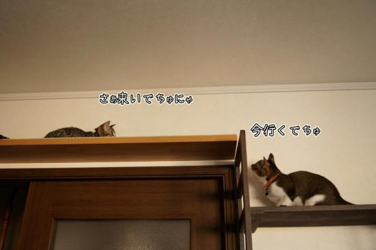 1_20120920085759.jpg