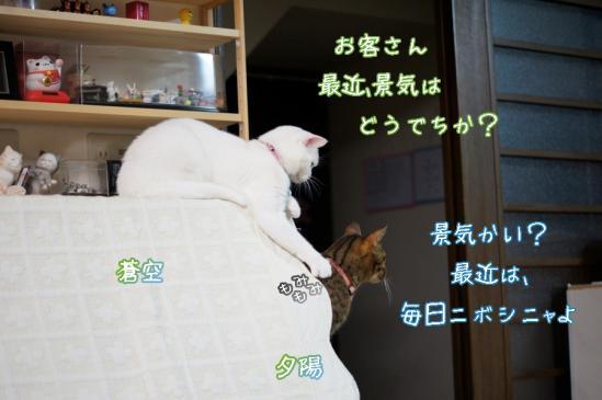 2_20120417001056.jpg