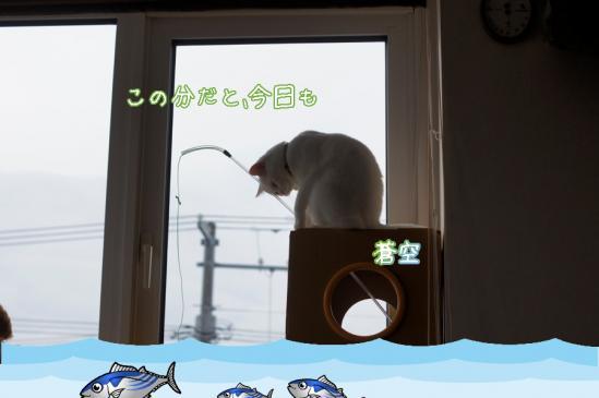 2_20120418073508.jpg