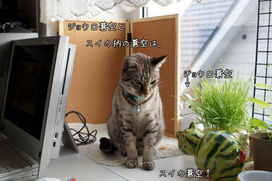 2_20120710080029.jpg