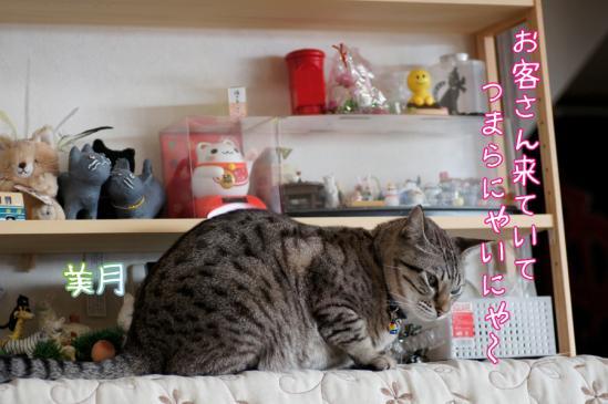 3_20120310190609.jpg