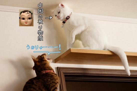 3_20120330074711.jpg
