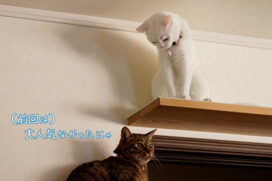 3_20120401232012.jpg