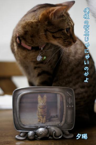 3_20120513075744.jpg