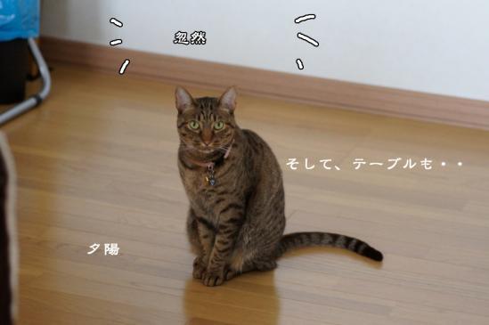 3_20120615083736.jpg