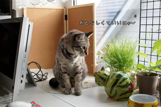 3_20120710080028.jpg