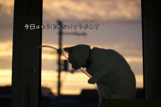 3_20120809231856.jpg