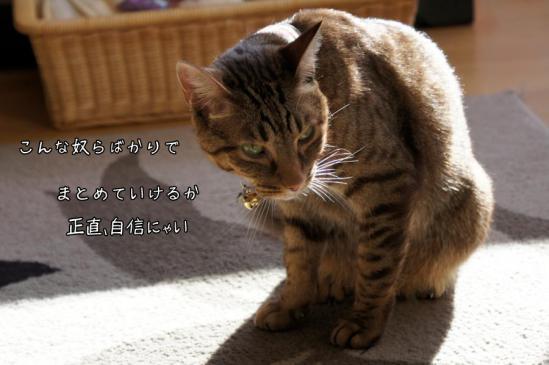 3_20120902123352.jpg
