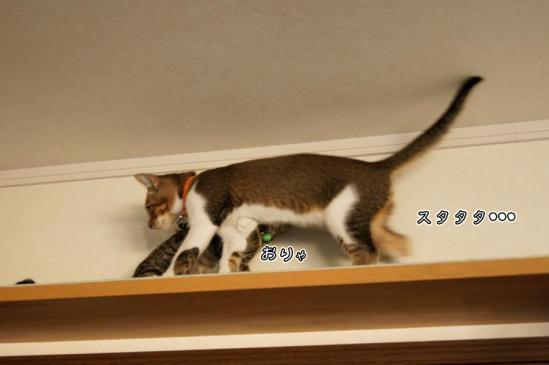 3_20120920085758.jpg