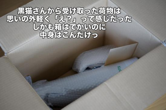 3_20121118214516.jpg