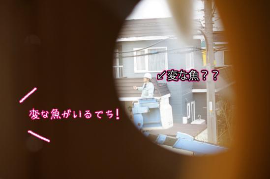 4_20120508072704.jpg