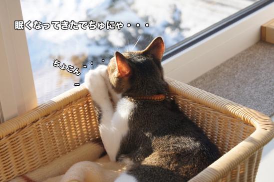 4_20121127010847.jpg