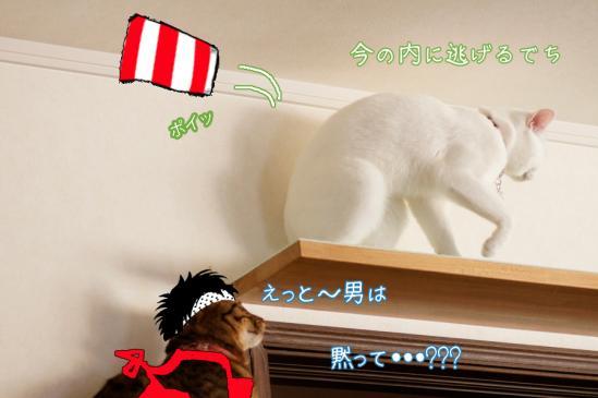 5_20120401232011.jpg