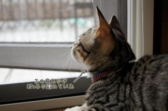 5_20121002004707.jpg