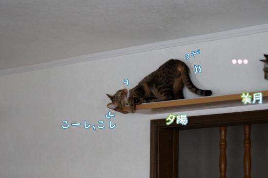 6_20120324084644.jpg