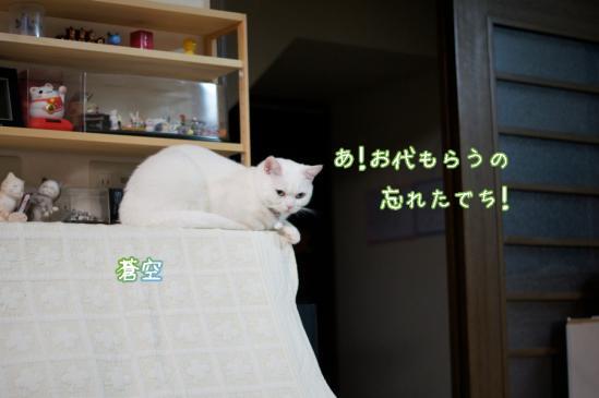 6_20120416231309.jpg