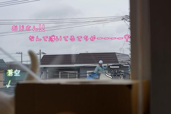 6_20120508072701.jpg