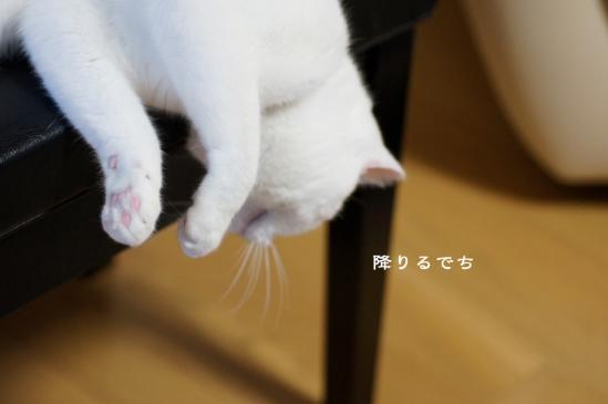6_20120618075552.jpg