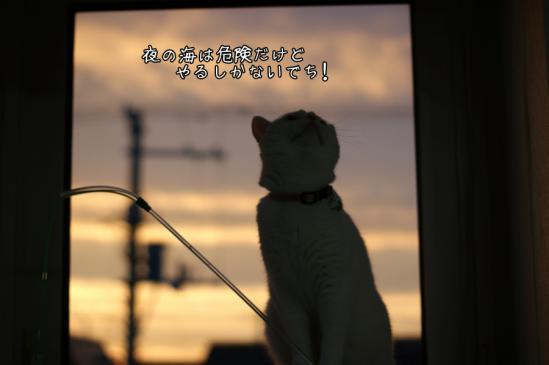 6_20120809231855.jpg