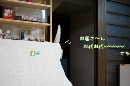 7_20120416231228.jpg