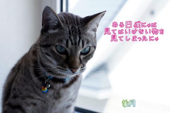 7_20120419081220.jpg