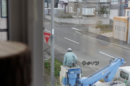 7_20120508072623.jpg