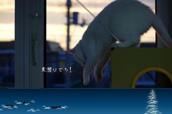 7_20120809231819.jpg