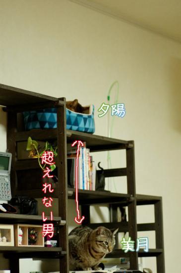 8_20120329085018.jpg