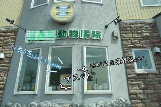 8_20120511232648.jpg