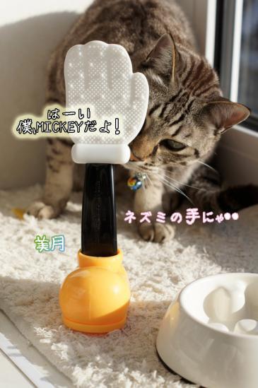 9_20120427100447.jpg