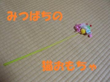 P1050960.jpg