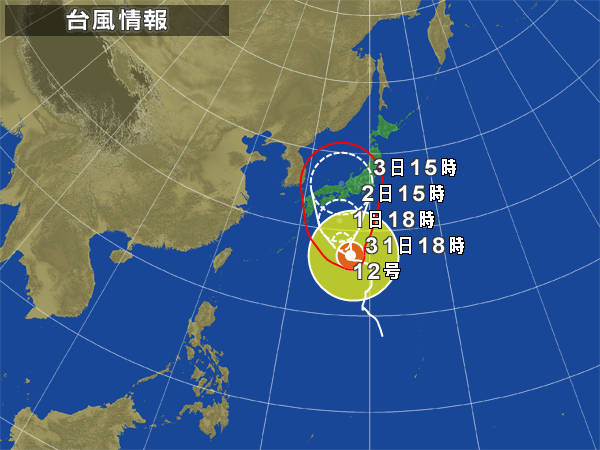 typha20110831.jpg