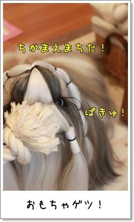 2010_0422_074056AA.jpg