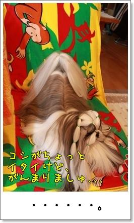 2010_0423_074054AA.jpg