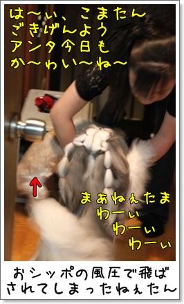2010_0525_193659AA.jpg