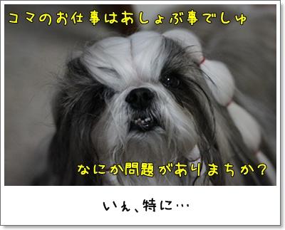 2010_0525_194344AA.jpg