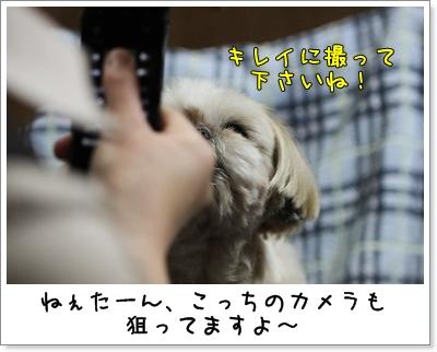 2010_0525_195029AA.jpg