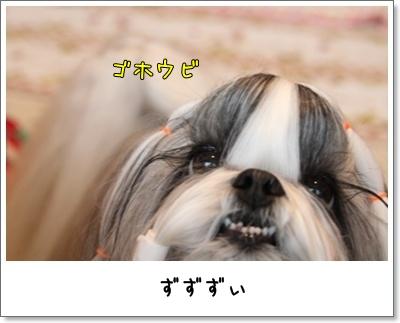 2010_0526_074458AA.jpg