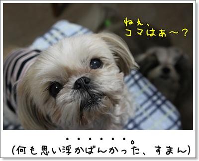 2010_0527_193614AA.jpg