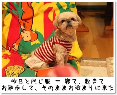 2010_0529_213520AA.jpg