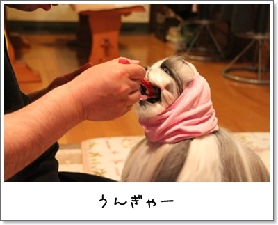 2010_0529_213643AA.jpg