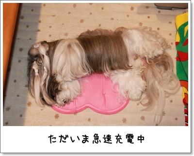 2010_0603_222456AA.jpg