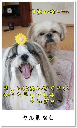 2010_0613_152127AA.jpg