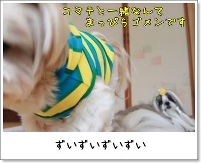 2010_0613_152718AA.jpg